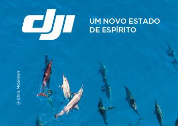 Conteúdo Especial_Marca_152_http://www.aldo.com.br/AldoMarketing/Content/img/marca/152/crazy/crazy_miniatura_180115150610050.jpg